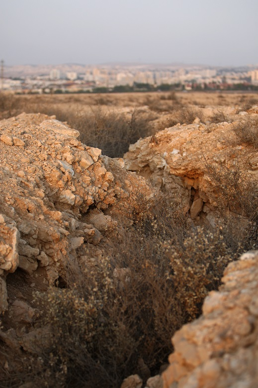 WWI  trenches outside Beersheba. Photograph by Mike Bowers